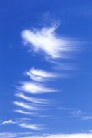 すじ雲 22320008341| 写真素材・ストックフォト・画像・イラスト素材|アマナイメージズ