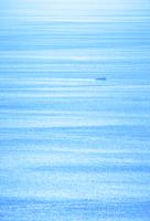 光る海と船
