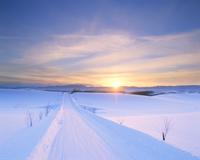 雪道と夕日 22320009948| 写真素材・ストックフォト・画像・イラスト素材|アマナイメージズ