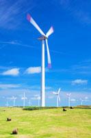 風力発電の風車と牧草ロール