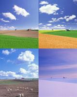丘と小屋の四季