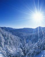 冬の樹林と山並みと太陽 北見富士方向