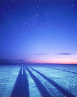 雪原と木陰と黎明の空