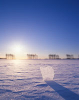 雪原と朝日と氷のかけら 22320014735| 写真素材・ストックフォト・画像・イラスト素材|アマナイメージズ