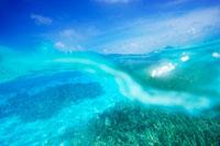 波とサンゴ礁