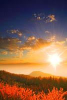 カラマツ樹林の紅葉と御岳と夕日