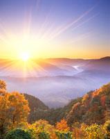紅葉樹林と御斉峠方向の山並みと朝日