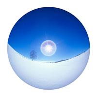 雪原と一本の木と太陽