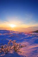 樹氷と夕日と乗鞍岳と穂高連峰方向の山並み