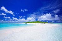 バードアイランドのビーチとボート 22320023214| 写真素材・ストックフォト・画像・イラスト素材|アマナイメージズ