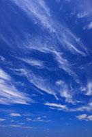すじ雲 22320023985| 写真素材・ストックフォト・画像・イラスト素材|アマナイメージズ