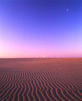 砂漠の風紋と朝の月