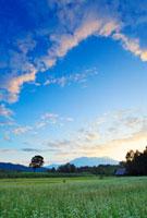 蕎麦の花畑と御岳と夕焼け 22320028245| 写真素材・ストックフォト・画像・イラスト素材|アマナイメージズ