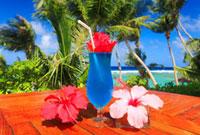 ブルーハワイとハイビスカスと海