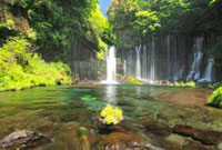 水草の生えた岩と新緑の白糸の滝