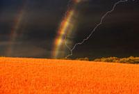 赤麦の丘と二重の虹と雷 夕景