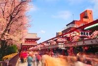 仲見世商店街の歩行者天国を往来する歩行者と桜と浅草寺