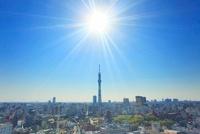 太陽の光芒と東京スカイツリーと浅草の街並 22320033119| 写真素材・ストックフォト・画像・イラスト素材|アマナイメージズ