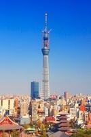 東京スカイツリーと浅草の街並 22320033120| 写真素材・ストックフォト・画像・イラスト素材|アマナイメージズ