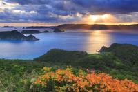 リュウキュウハゼの紅葉と渡嘉敷島と朝日の光芒
