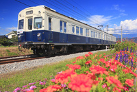 別所線の7253編成の丸窓電車と花壇