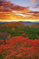 朝焼けの乗鞍岳位ヶ原の紅葉と八ケ岳方向の山並み