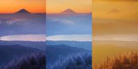 朝の高ボッチ高原の霧氷と富士山と諏訪湖,定点撮影