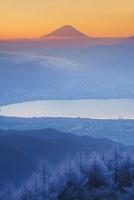 朝の高ボッチ高原の霧氷と富士山と諏訪湖