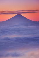 朝の高ボッチ高原から望む富士山と雲海