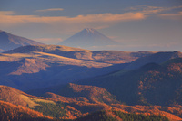 夕方の王ヶ鼻から望む富士山と紅葉の樹林