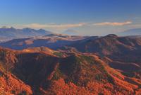 夕方の王ヶ鼻から望む富士山と八ケ岳と紅葉の樹林