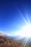 朝の御岳高原から望む経ヶ岳方向の山並みと紅葉のカラマツ林