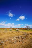 秋の大湯環状列石 22320040986| 写真素材・ストックフォト・画像・イラスト素材|アマナイメージズ