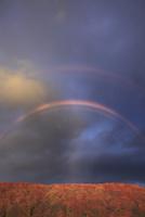 城ヶ倉渓谷の紅葉と夕方のダブルレインボー 22320041300| 写真素材・ストックフォト・画像・イラスト素材|アマナイメージズ