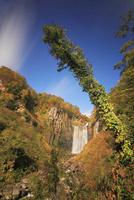 月夜の虹かかる賀老の滝とブナ林の紅葉 22320041440| 写真素材・ストックフォト・画像・イラスト素材|アマナイメージズ