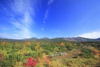 望岳台から望む十勝岳などの山並みと紅葉の樹林と秋空 22320041480  写真素材・ストックフォト・画像・イラスト素材 アマナイメージズ