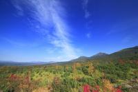 望岳台から望む美瑛岳などの山並みと紅葉の樹林と秋空 22320041483  写真素材・ストックフォト・画像・イラスト素材 アマナイメージズ