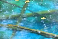 雨の神の子池 22320041512| 写真素材・ストックフォト・画像・イラスト素材|アマナイメージズ