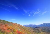 赤岳第一花園から望むナナカマドの紅葉とニセイカウシュッペ山 22320041561  写真素材・ストックフォト・画像・イラスト素材 アマナイメージズ