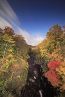 月夜の賀老高原の千走川とブナ林の紅葉 22320041614| 写真素材・ストックフォト・画像・イラスト素材|アマナイメージズ