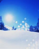 雪景色と太陽 22321007529| 写真素材・ストックフォト・画像・イラスト素材|アマナイメージズ