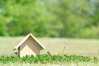 芝の上の木製の家