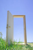 芝の上のドア
