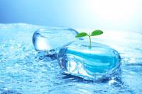 若葉と流水とガラスのオブジェ