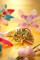 正月飾りの扇子 22321023519| 写真素材・ストックフォト・画像・イラスト素材|アマナイメージズ