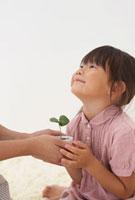 母の持つ新芽に手を添える女の子 22321025737| 写真素材・ストックフォト・画像・イラスト素材|アマナイメージズ