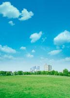青空と芝生と街並み