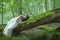 森の中で倒木に横たわる女性 22323001712| 写真素材・ストックフォト・画像・イラスト素材|アマナイメージズ