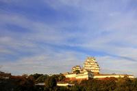 姫路城 白鷺城 大天守 紅葉 世界文化遺産遺産