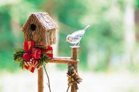 小鳥のクリスマス